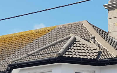 roof cleaning Peacehaven